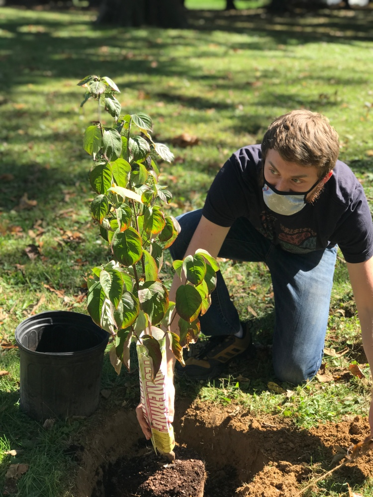 Andrew Conboy planting a tree in the ground.